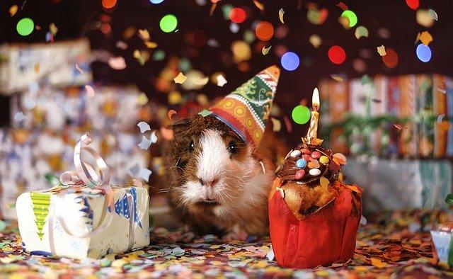 Vicces születésnapi üdvözlet
